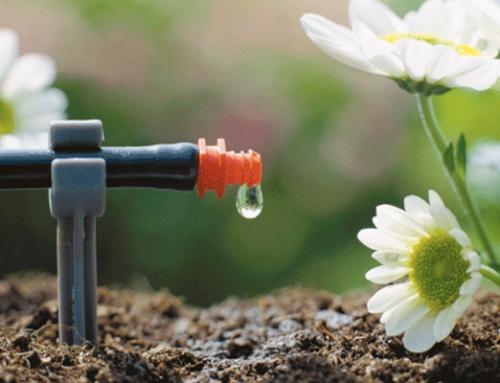Ya se puede certificar la huella de CO2 de los productos agrícolas