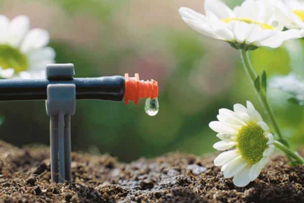 Ya se puede certificar la huella de CO2 de los productos agrícolas.